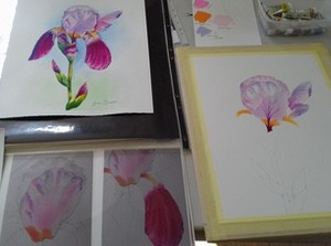 The Flower Painting Project